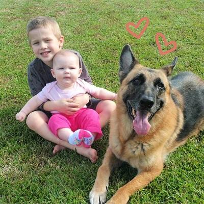 big dogs little kids