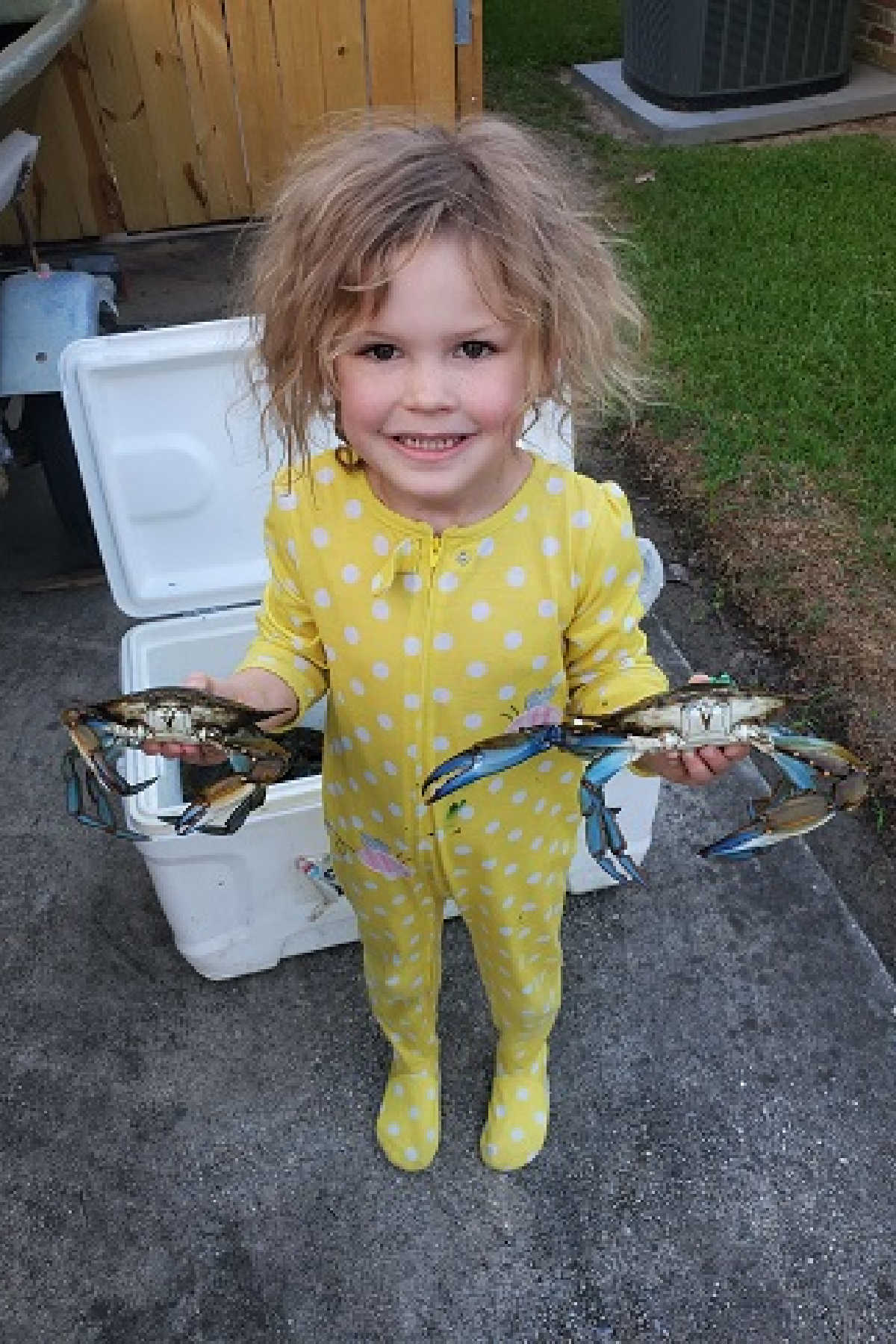 little girl in yellow pyjamas holding two blue crabs