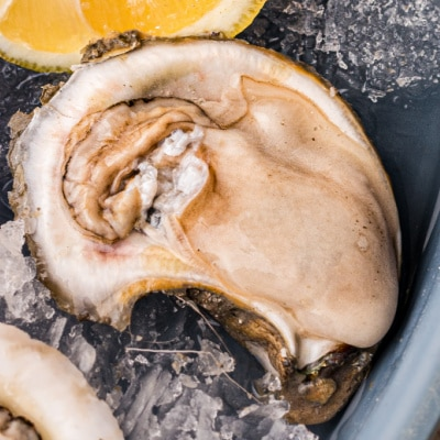 raw oyster on ice next to a slice of lemon