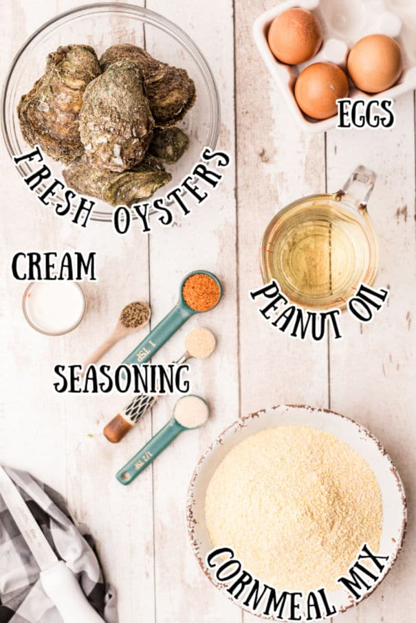 ingredients picture for fried oysters, oysters in shell, eggs, peanut oil, cream, seasoning, cornmeal mix