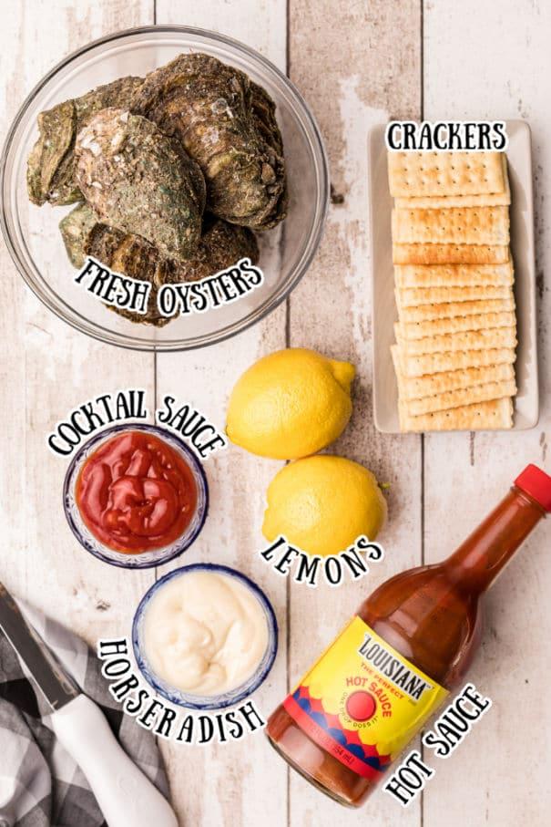 raw oysters, cocktail sauce, lemons, horseradish, hot sauce, crackers.