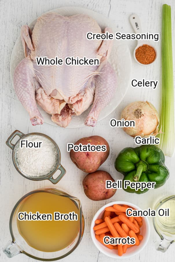 ingredients laid out for a chicken stew, with names typed on