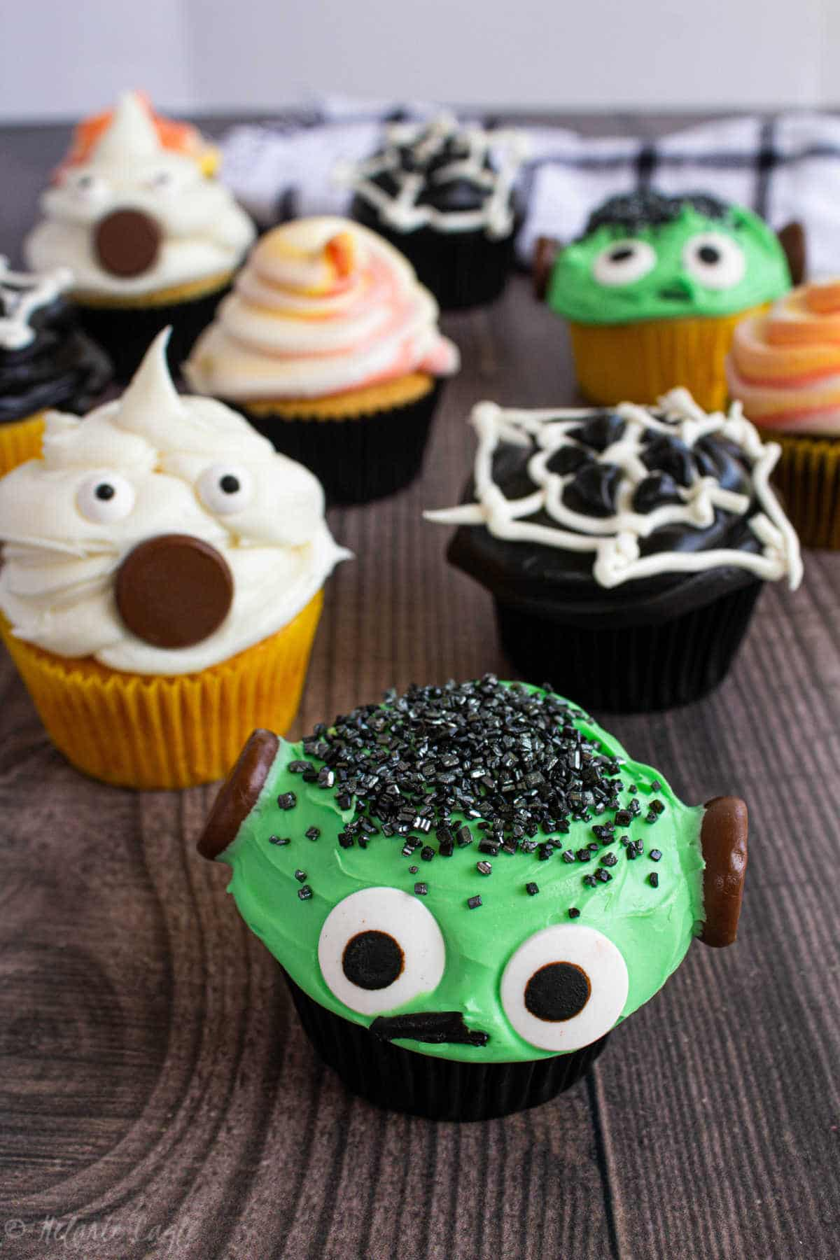 close up of ghost cupcakes, frankenstein cupcakes, spiderweb cupcakes